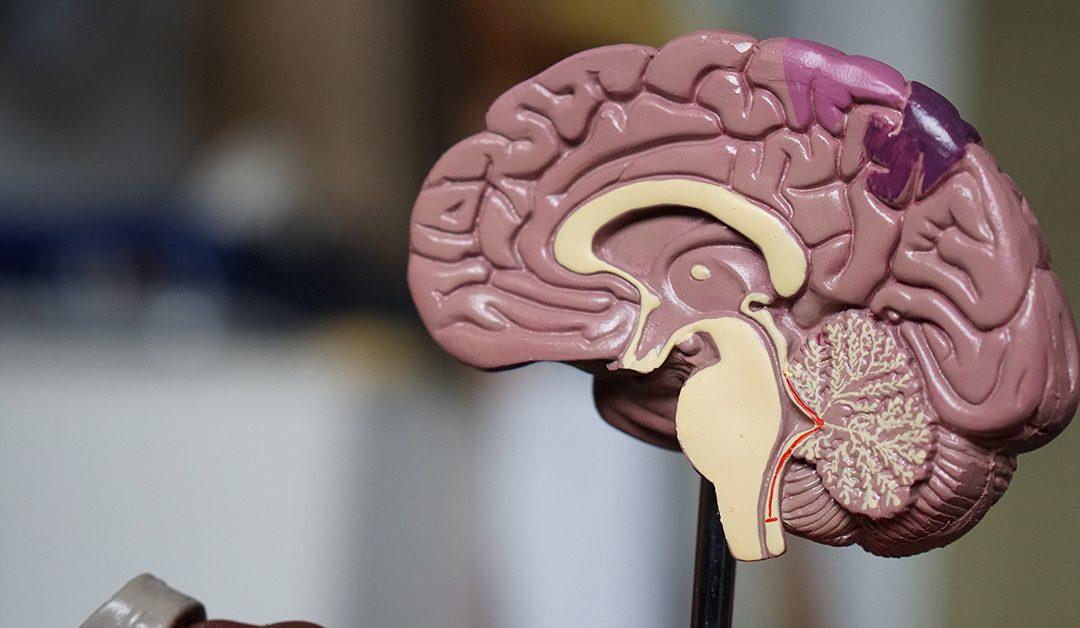 Is Traumatic Brain Injury Permanent?